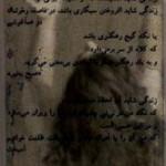 Lida Shanehchiyan 5/5